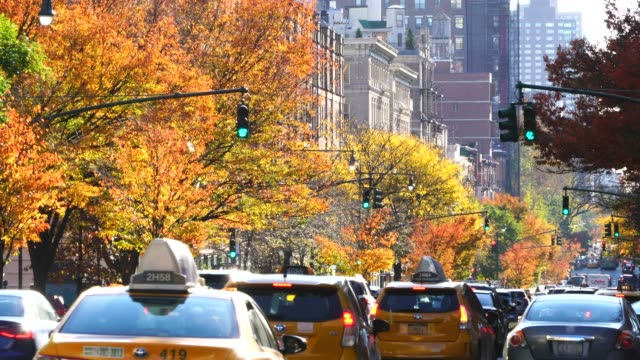 cars run on the autumn color tree-lined avenue among the uptown residential buildings at new york ny usa on nov. 11 2018. - yellow taxi点の映像素材/bロール