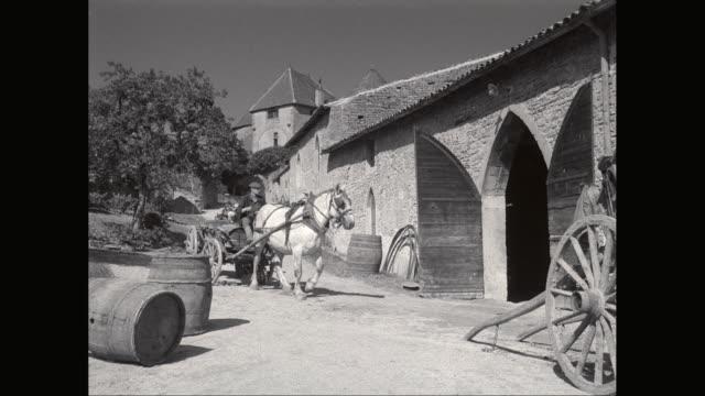 WS PAN Cart carrying wine barrel in vineyard / United States