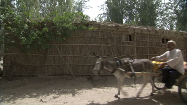 Cartload of woven silk being driven down dusty road, Hetian, Xinjiang province, China,