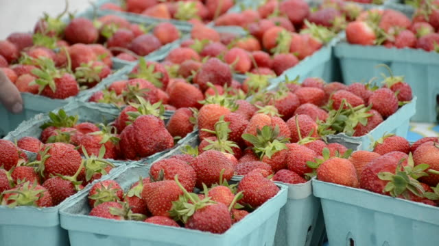 Cartons of fresh strawberries at a farmers market.
