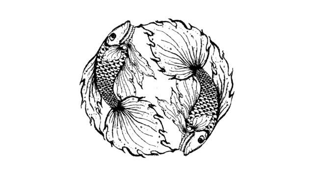cartoon fish - engraved image stock videos & royalty-free footage
