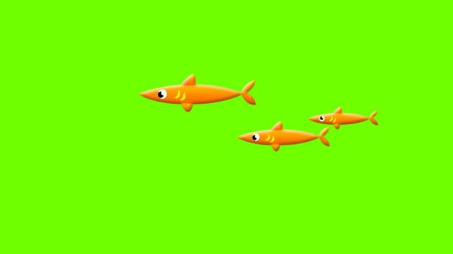 vídeos de stock e filmes b-roll de cartoon fishes on greenscreen - peixe