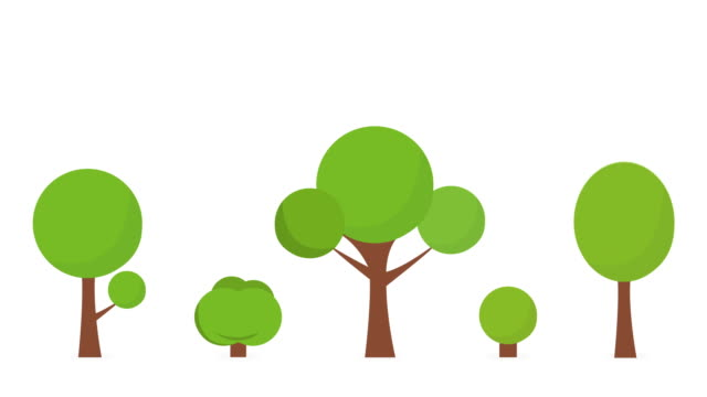 cartoon growing tree animation, alpha matte . 4k white background. - tree stock videos & royalty-free footage