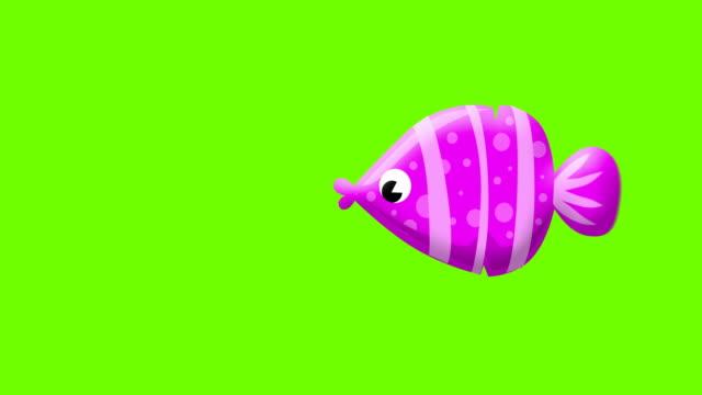 グリーンスクリーン上の漫画の紫色の魚 - クラゲ点の映像素材/bロール