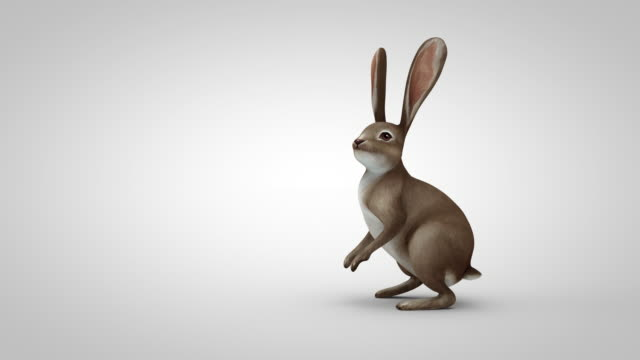 cartoon rabbit running to the middle of the screen, standing up, looking around and runs away - rabbit animal stock videos & royalty-free footage