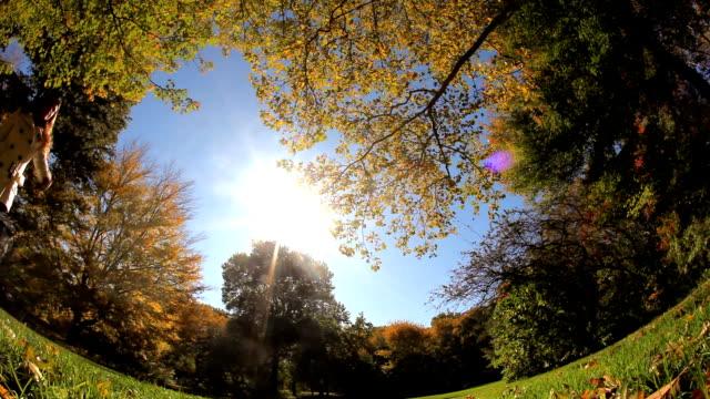 cartwheel in the park - cartwheel stock videos & royalty-free footage