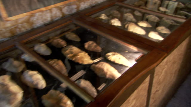 stockvideo's en b-roll-footage met carved stone tools from caves at les eyzies are displayed in cases. available in hd - prehistorische mens