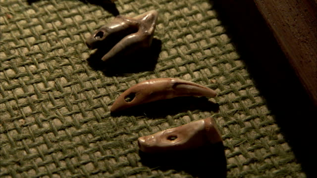stockvideo's en b-roll-footage met carved stones with holes in them for stringing are displayed on a mat in a display case. available in hd - prehistorische mens