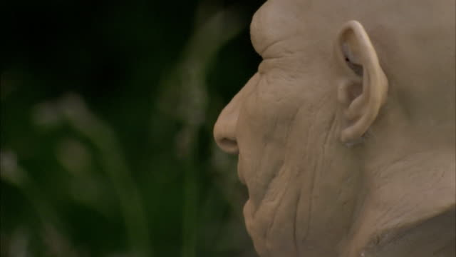 A carving depicts the head of a primitive man. Available in HD
