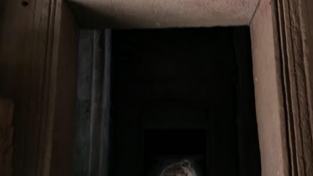 vídeos y material grabado en eventos de stock de carvings on the archway of a temple in cambodia - arquitrabe