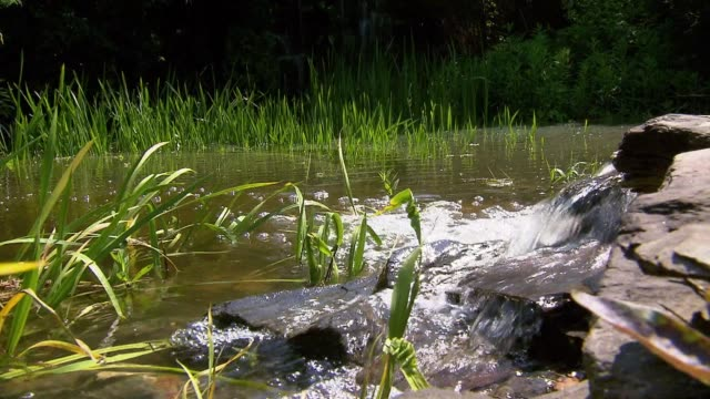 cascade in garden - pond stock videos & royalty-free footage