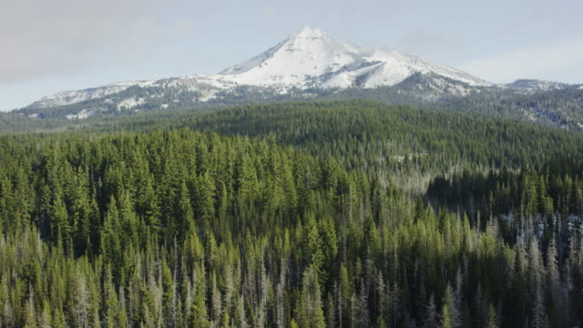 cascade mountain range south sister, bend, oregon - national forest stock videos and b-roll footage