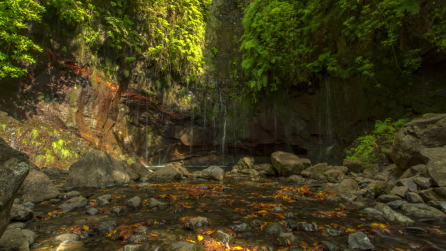 cascade of caldeirao verde. madeira, portugal (ii) - 4k time-lapse - verde color stock videos & royalty-free footage