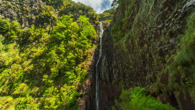 cascade of caldeirao verde. madeira, portugal - 4k time-lapse - verde color stock videos & royalty-free footage
