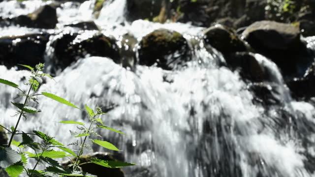 垂れ下がるオーディオ - 小川点の映像素材/bロール