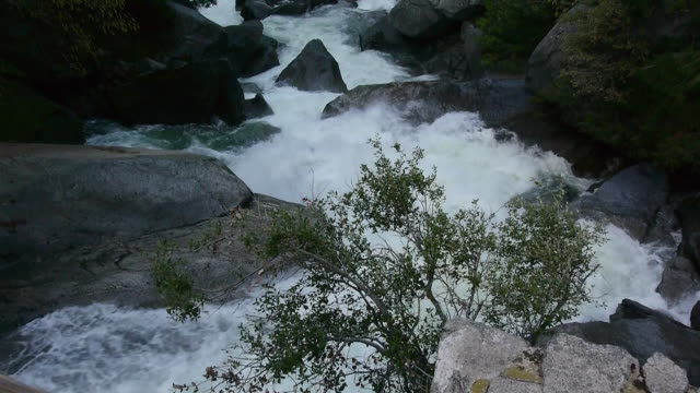cascading merced river with boulders & trees, looking downstream in yosemite national park, california - merced fluss stock-videos und b-roll-filmmaterial