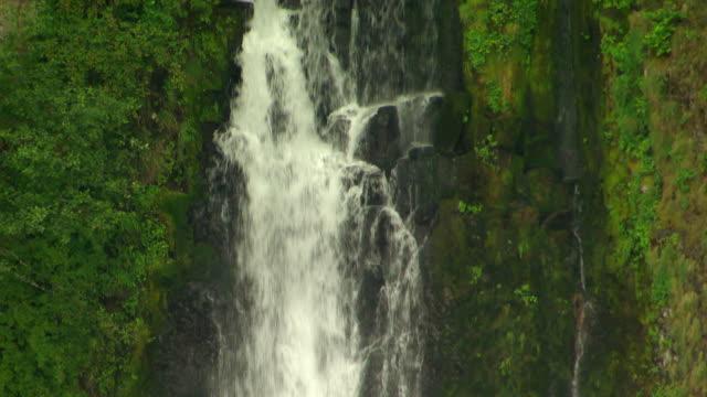 vídeos y material grabado en eventos de stock de aerial tu cascading water at top of multnomah falls / oregon, united states - cascadas de multnomah