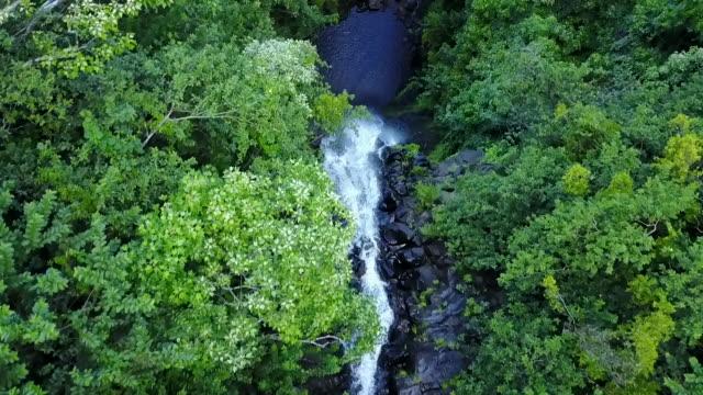 cascading waterfall in hawaiian landscape, aerial - 滝点の映像素材/bロール