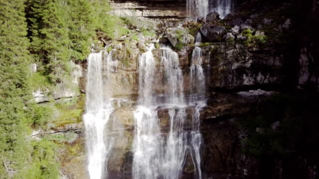 cascata di vallesinella nel bosco di pini nel parco naturale adamello brenta - cascata stock videos and b-roll footage