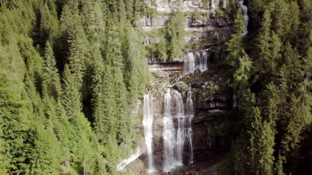 vídeos de stock e filmes b-roll de cascata di vallesinella nel bosco di pini - paredão rochoso