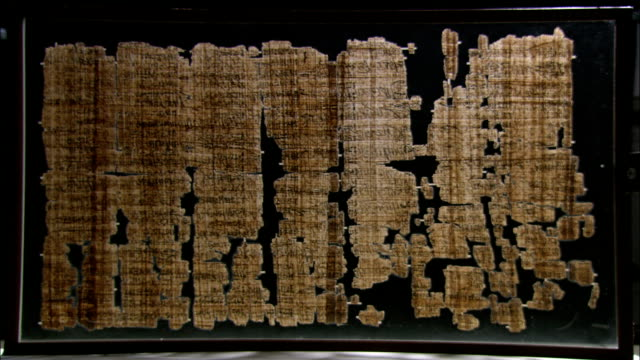 a case displays a large papyrus fragment. - arte dell'antichità video stock e b–roll