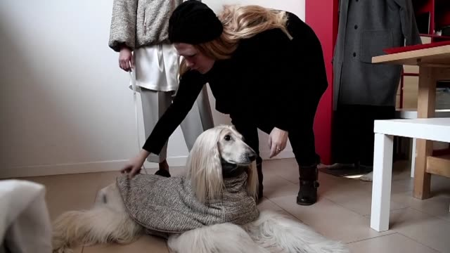 Cashmere sweaters or grey woollen coats Italian fashionistas can now dress their dogs with tailored clothing matching their outfit