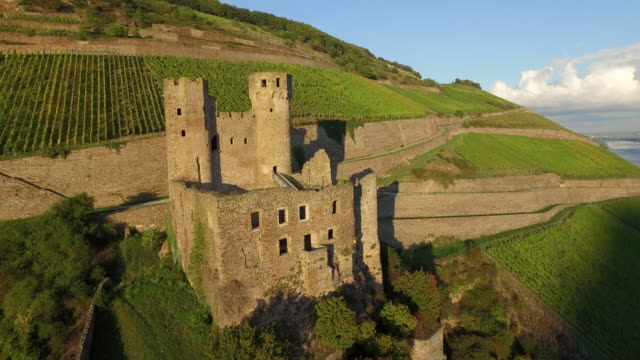 castle ehrenfels - river rhine stock videos and b-roll footage