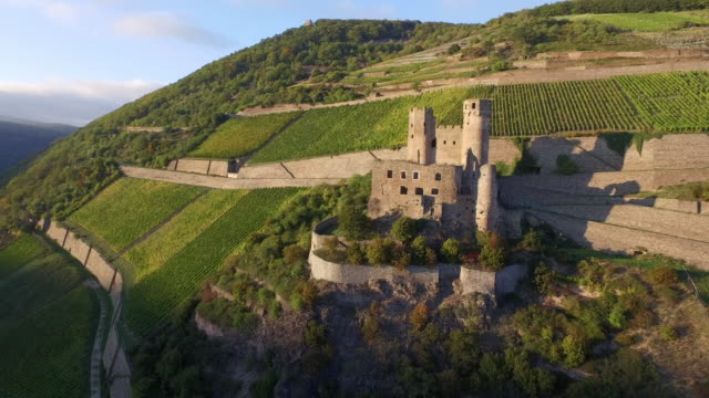 castle ehrenfels - old ruin stock videos & royalty-free footage