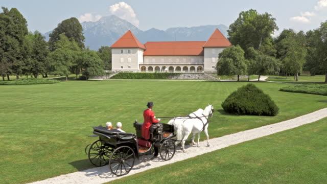 aerial castle park und der pferdekutsche fahren sie durch die - pferdeantrieb stock-videos und b-roll-filmmaterial
