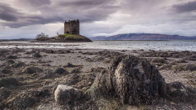 castle stalker on the shore of loch linnhe in the scottish highlands, uk. - castle stock videos & royalty-free footage
