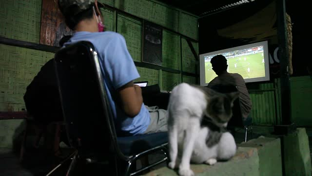cat cleans itself as indonesian men watch the live broadcast of the uefa euro 2020 football final match between italy and england on a small screen... - editorial stock videos & royalty-free footage