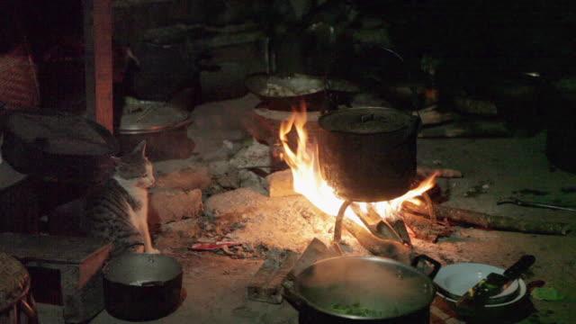 ms cat next to pot over fire / xam neua, laos - fuoco acceso video stock e b–roll