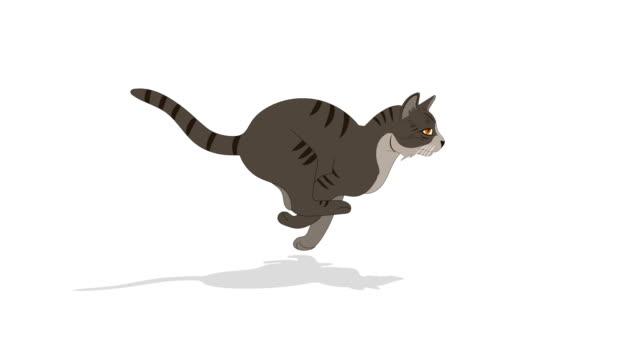 猫実行サイクルアニメーション - シルエット点の映像素材/bロール