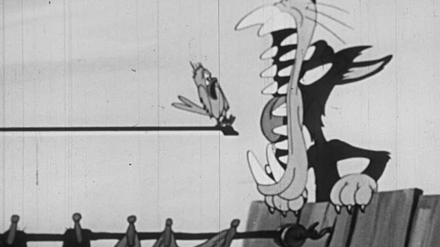vídeos de stock, filmes e b-roll de b/w 1952 animated pan cat trying to eat bird on violin bow / bird trapping cat in bird cage - perigo