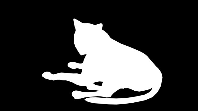 vídeos y material grabado en eventos de stock de cat (en bucle) - pata com garras