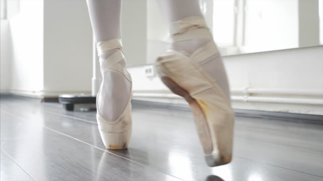 cat walk in ballet shoes. - passione video stock e b–roll