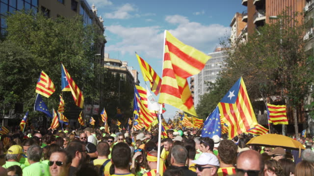 catalan flags at demonstration for independence at diada 2017 - referendum stock-videos und b-roll-filmmaterial