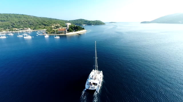 AERIAL Catamaran sailing in the bay