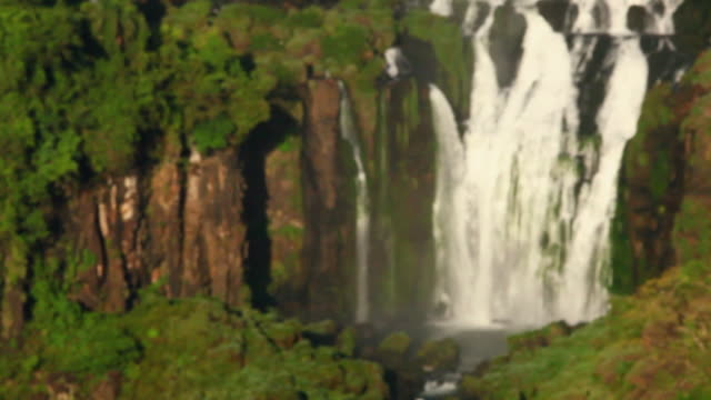 stockvideo's en b-roll-footage met ws r/f cataratas do iguacu falls / foz do iguacu, parana, brazil - infaden