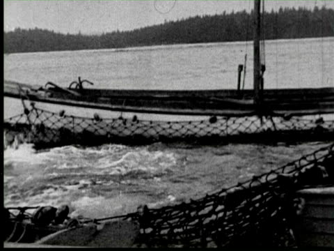 b/w catching big fish by net, united states / audio - fischer stock-videos und b-roll-filmmaterial