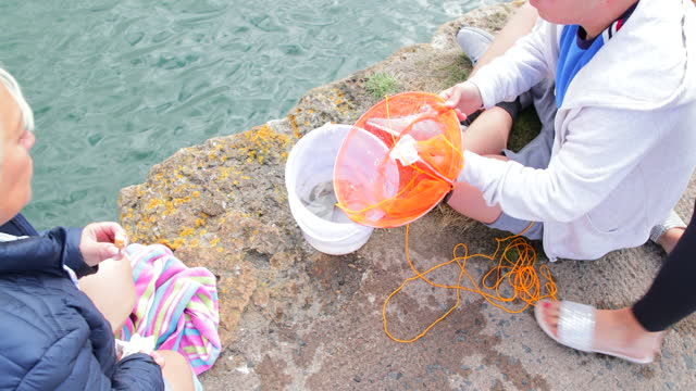 catching crabs - crustacean stock videos & royalty-free footage
