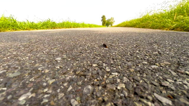stockvideo's en b-roll-footage met caterpillar on the road - pjphoto69
