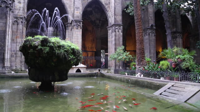 cathedral (cathedral of santa eulalia), fountain in the cloister, barcelona, spain - ゴシック地区点の映像素材/bロール