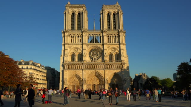 vidéos et rushes de cathedral notre dame, unesco world heritage site, paris, france, europe - cadrage en pied