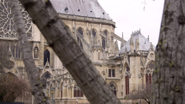 cathedral towers through trees - notre dame de paris stock videos and b-roll footage