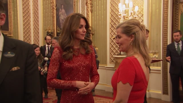 catherine, duchess of cambridge and sophie, countess of wessex, chat at buckingham palace reception to mark the uk africa investment summit - sophie rhys jones, countess of wessex stock videos & royalty-free footage
