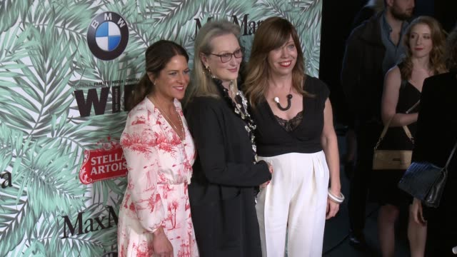 cathy schulman, meryl streep and kirsten schaffer at 10th annual women in film pre-oscar cocktail party presented by max mara and bmw at nightingale... - nightingale stock videos & royalty-free footage