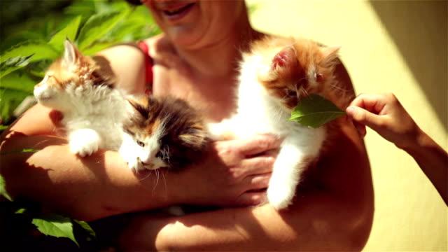 猫の手で遊ぶ - 雑種のネコ点の映像素材/bロール