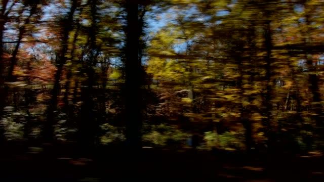 キャッツキル ny xxi 同期運転プロセス プレート シリーズ右側 - part of a series点の映像素材/bロール