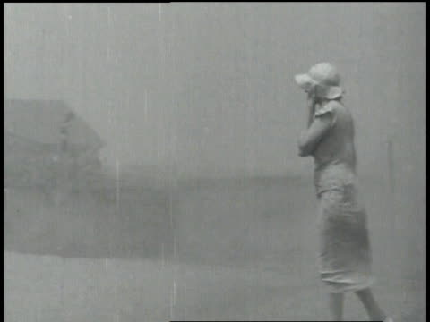 ms cattle being herded through dust storm / united states - 1937 stock videos and b-roll footage